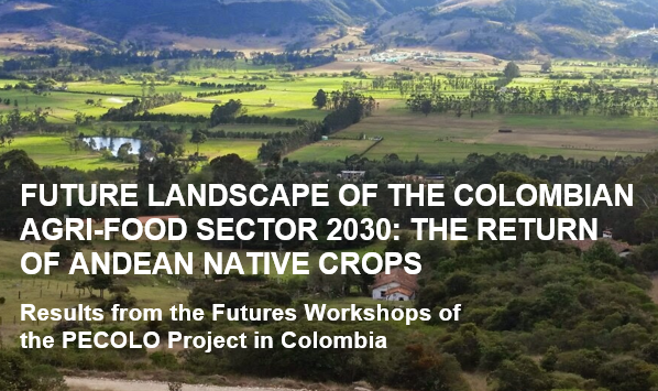 The Colombian results for #PECOLO project are published. The project developed innovation environments among #agrifood sector in #Peru and #Colombia promoting Andean native crops. Thank you all involved at @UElBosque @UNALaMolina & @UniTurku! Reports at: https://t.co/UAHtY2tPhm https://t.co/6lFJSnv933