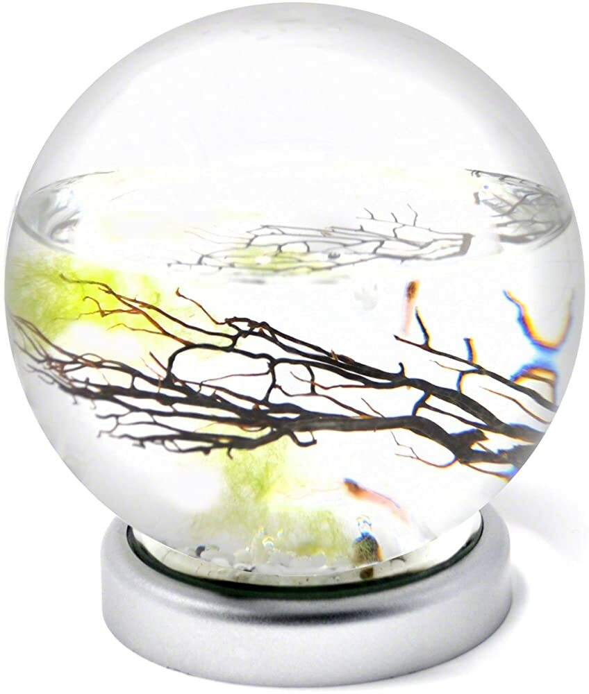 EcoSphere Closed Aquatic Ecosystem, Sphere with LED Base https://t.co/w4KuUFqgGu #gifts #giftideas #dog #cat #puppy #pets  #blackfriday #thanksgiving #cybermonday @amazon #amazon #primeday https://t.co/SML8oKOQoD