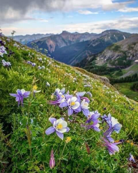 Places of #enchantment: Cascade, Idaho #travel #hiking #camping #bliss