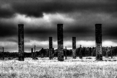 @iolanthe81 Auschwitz II Birkenau. Hard to believe the scale of the place. This is death industrialised. #NEVERAGAIN