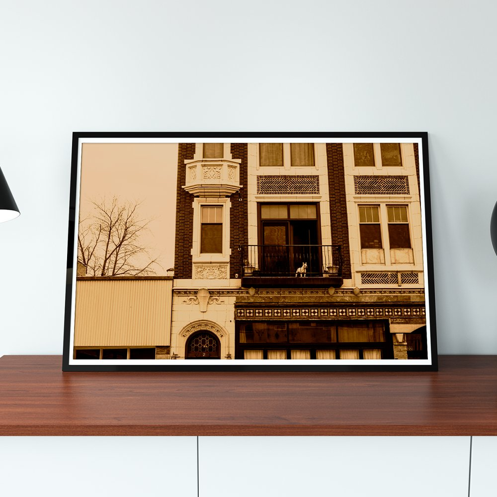 Get your hands on this print of a Frenchie (french bulldog) keeping watch over his neighborhood.  Buy the print here:   #frenchie #frenchbulldog #etsy #etsyshop #etsyfinds #smallbiz #photo #photoofday #instacool #fineart #chicagoart #etsystore
