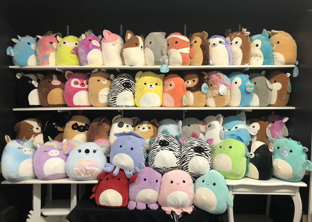 New Squishmallows are in! Lots of adorable new cuddly friends to chose from! #shop519 #getdtl #squishmallows #cuddle #cute #squirrelsofinstagram #fun #love #shopsmall #shoplocal #happy #londonontario #thankyou