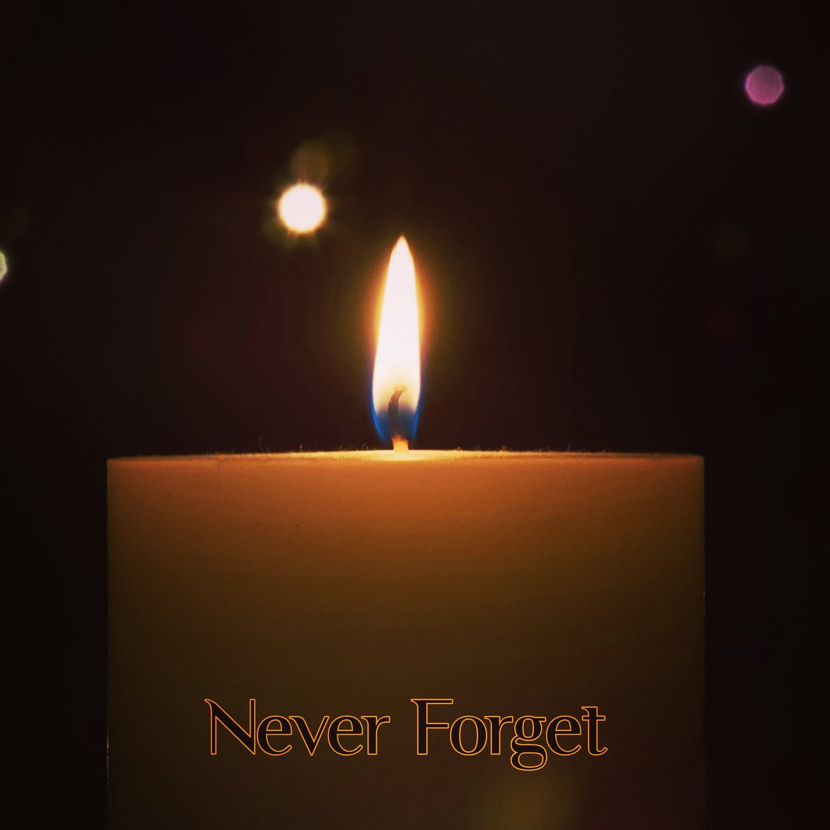 Today is #HolocaustRemembranceDay 2021.  We remember the six million Jews murdered in the Holocaust, as well as the millions of targeted people whose lives were destroyed by the senseless violence and hatred of the Nazis.   #WeRemember #NeverForget  #NeverAgain  #NoMoreHate