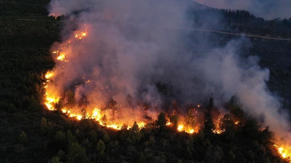 En el Bolsón, Patagonia argentina, el fuego arrasó casi 10.000 hectáreas de bosques nativos, un equivalente a media Ciudad de Buenos Aires. Y está tragedia va a seguir 😖 🔥