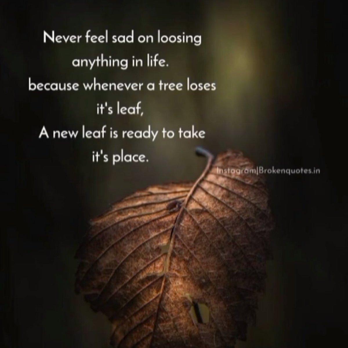 Jangan takut kehilangan...kehidupan ini fana. https://t.co/Md1Mm2zz23