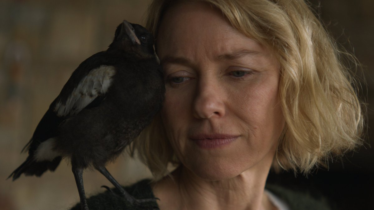 Naomi Watts is really, really incredible in her new movie, Penguin Bloom