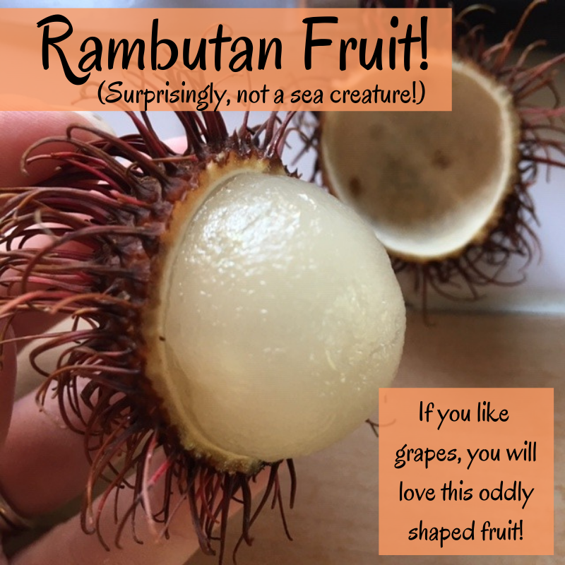 The most surprising thing about Rambutan is that there's a PIT inside! Good thing it came with instructions on how to eat!  #thisisurbanfitness #rambutan #fruit #fruits #tropical #summer #rambutanfruit #HealthyFood #breakfast #lunch #snacks #brunch #vegetarian #HealthyEating