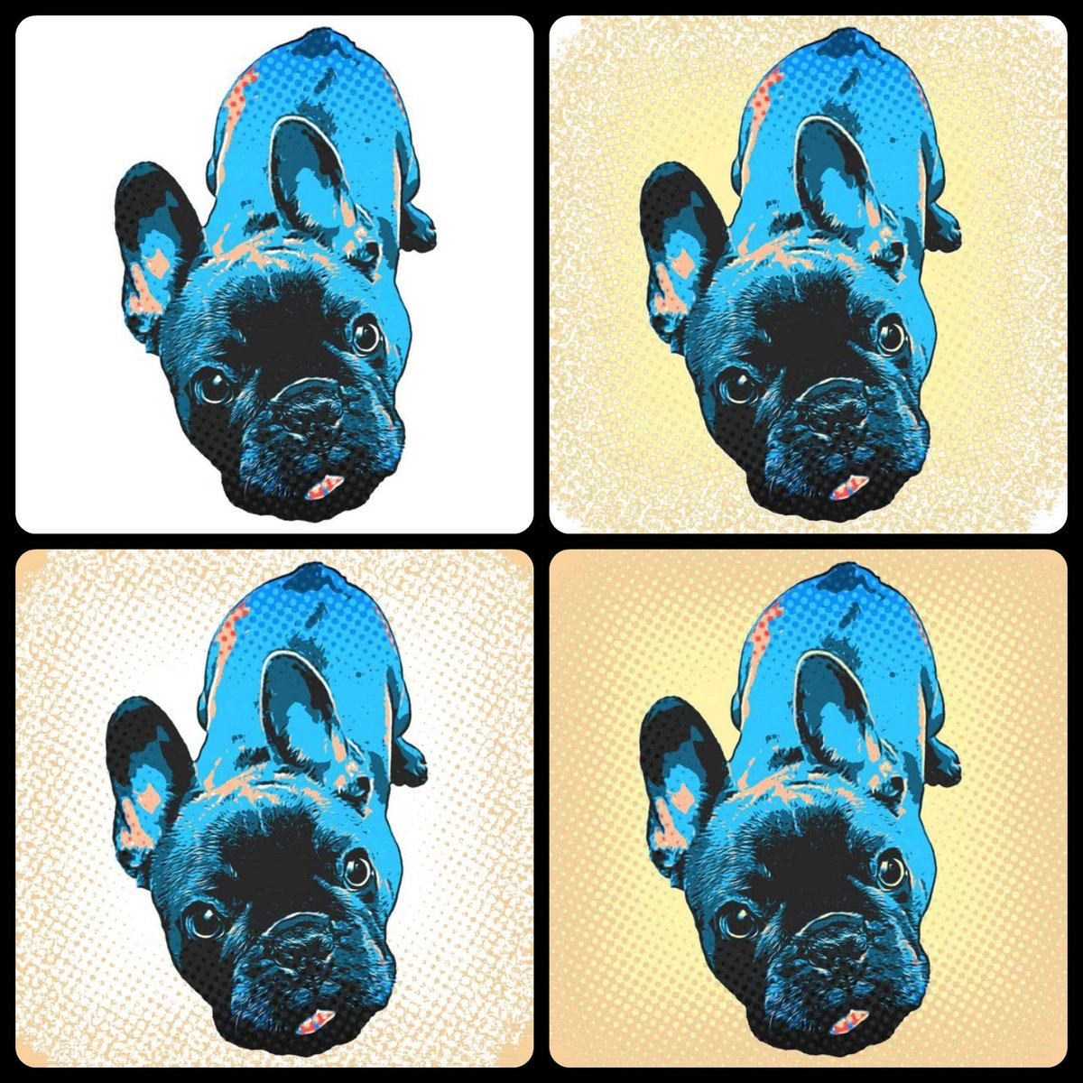 🐾 New graphics were made in Pop Art style. 👀  #BuckóFrenchie #FrenchBulldog #frenchie #puppylife #doglife #redbubble #popart #popartstyle🎨 #popartlover @redbubble