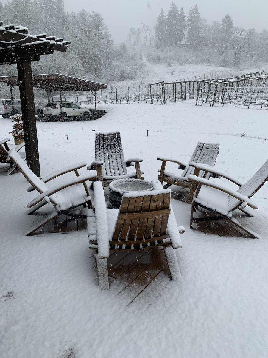 Our first snow yesterday ❄❄❄So beautiful.  Bundle up and make your reservation.  We have heaters on the porch fired up! 🔥🔥  #pnwonderland #snowday #pinotweather #oregonwinecountry