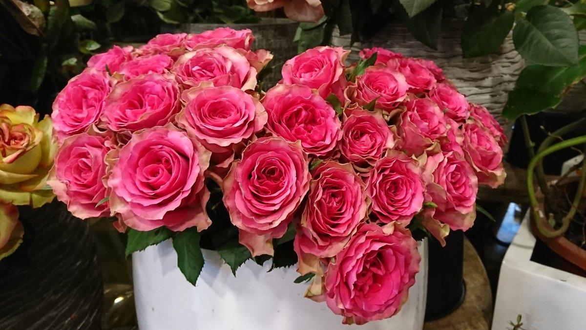 #wednesdaythought  #Flowers