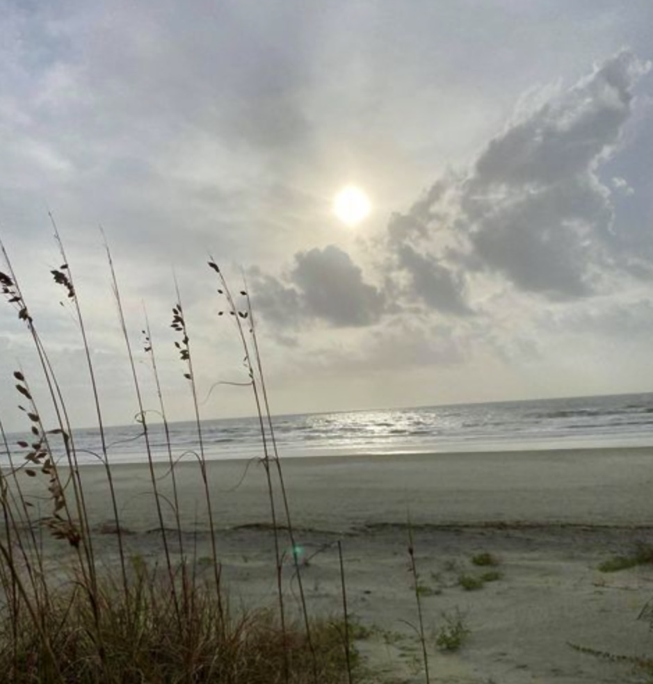 Anyone else suffering from lack of vitamin sea? We've got the perfect remedy! 😉🌊   📸: Megan Moore   #naturallykiawah #protectwhatyoulove #kiawahisland #nature #wildlife #beach #ocean