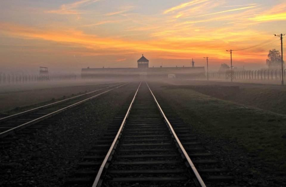 Auschwitz was liberated 76 years ago today   #Auschwitz76 #HolocaustRemembranceDay