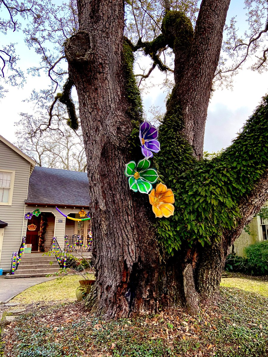 """@dionnewarwick My Mardi Gras """"house float"""" decorations bring me joy even though our Carnival season and parades are cancelled. 💜💚💛 #dionnewarwick"""