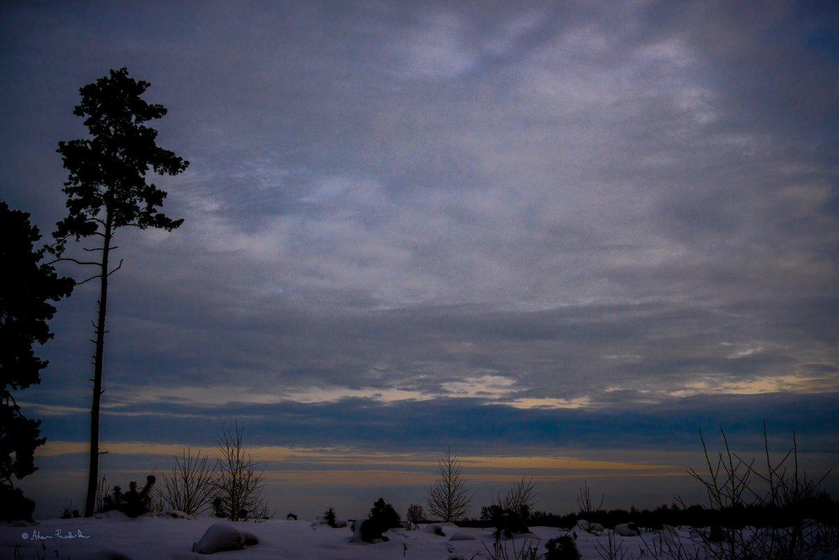 #NaturePhotography #wildlifephotography #landscape #photo #fotografia #sky #winter #Poland