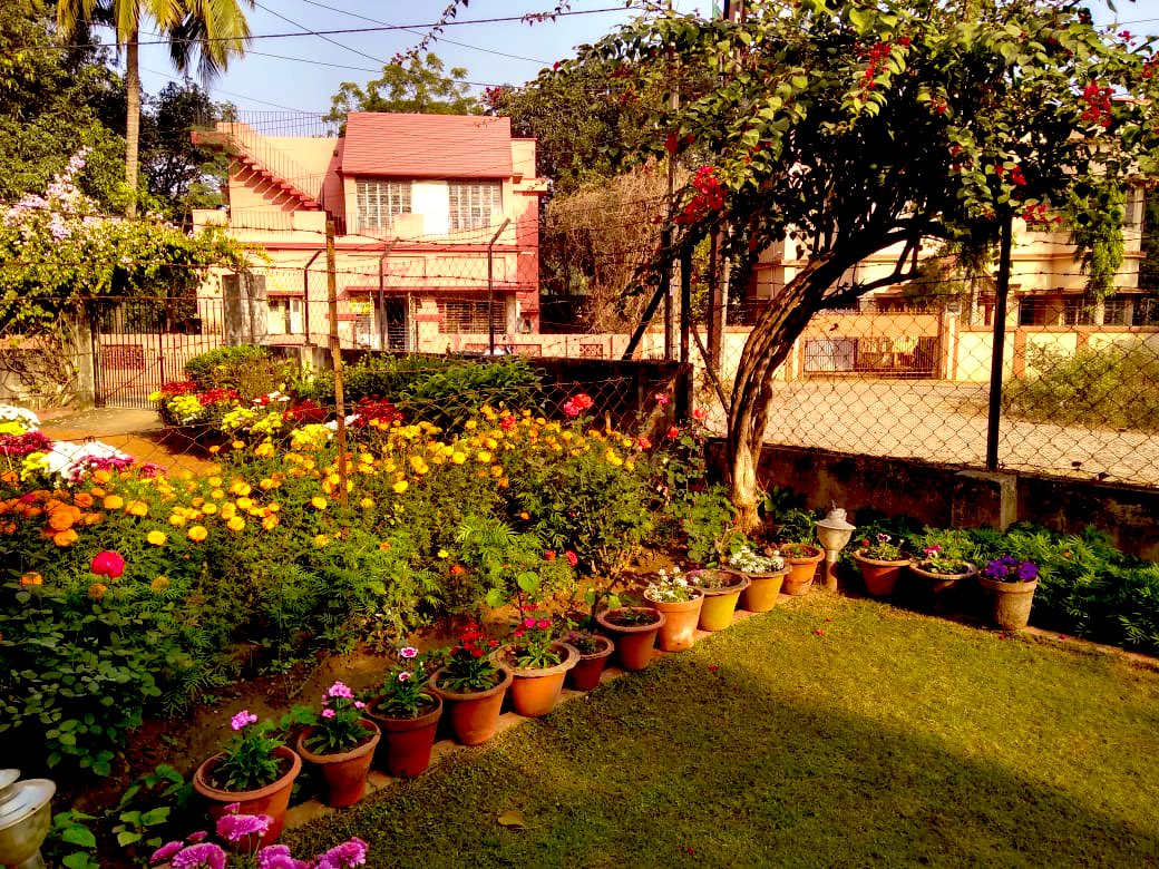 my parents' adorable garden in shantiniketan, india #dionnewarwick