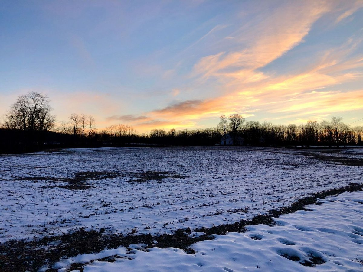 Winter Wonder⠀ #winter #snow #sunset #flx #muz4now #clouds #sky #treeline #field #winterlovers #snowlovers #flxbeauty #outdoors #nature #outdoorsnewyork #flxoutdoors #cloudlovers #skylovers