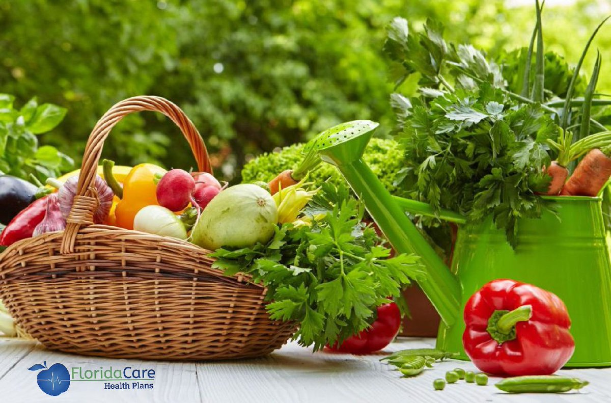 #floridacare #fit #fitness #health #healthquote #healthcare #happy #love #life #followme #quote #floridahealth #doctors #prevention #preventivecare #cure #healthy #healthyliving #followme #like4like #instalike #likeforlike #follow4follow #beneficios #salud #frutas #vegetales