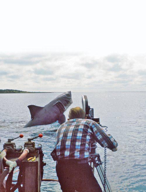 #jaws #shark #movie #Throwback #behindthescenes