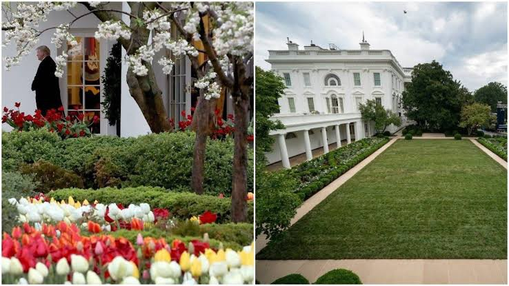 News about Melania setting up an office to continue her Be Best campaign has me perplexed.  I thought she was planning to finish her architecture degree after the superb redo of WH Rose Garden?  #ByeMelania