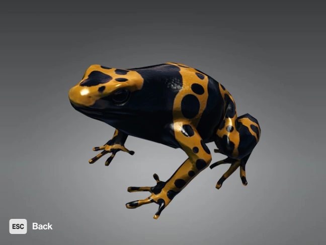 #Hitman || Appears in the mission Three-headed Serpent; lethally poisonous and can be used to do a murder; lovely colours; tries to escape when chased, unlike other poisons; unclear if using the frog kills or releases it. 🐸🐸🐸🐸🐸