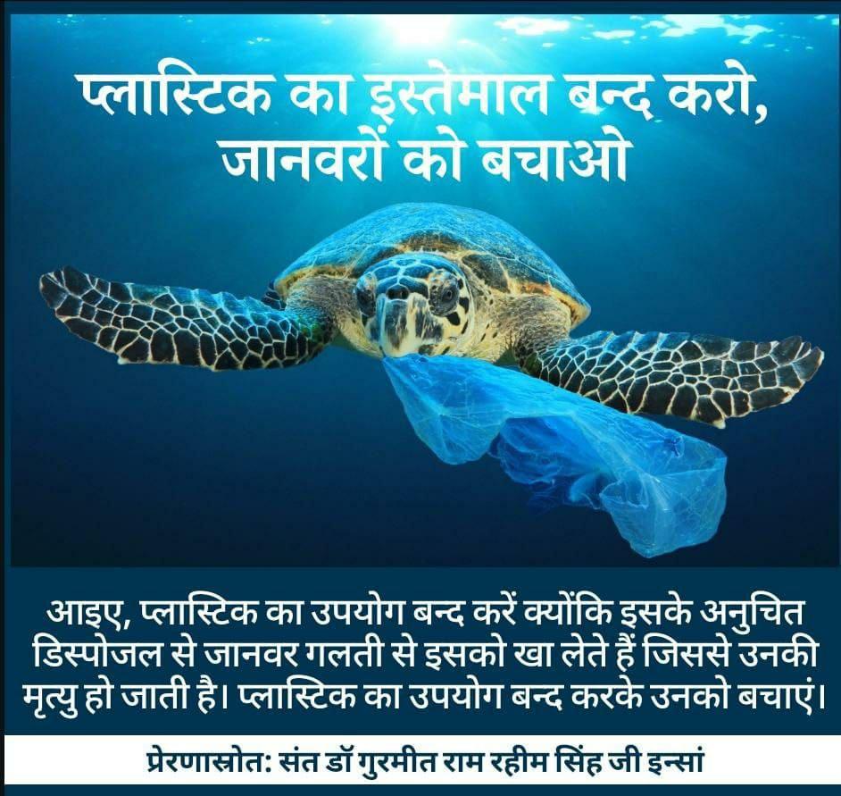 #SaveThePlanet #Nature #PlasticPollution #PlasticFree #InstaDaily #Instagood #PhotoOfTheDay #BabaRamRahim #SaintDrGurmeetRamRahimSinghJi #DeraSachaSauda