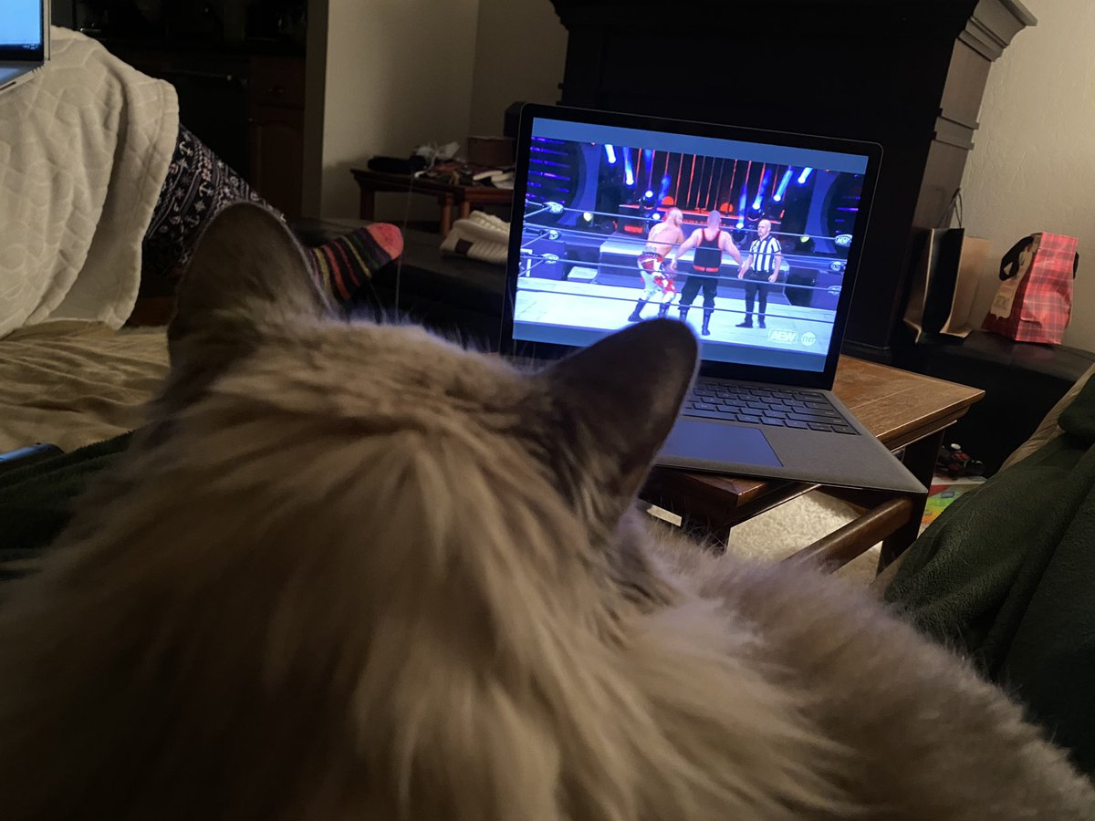 Cat is locked in on #AEWDynamite. She's a big @LanceHoyt fan, clearly.