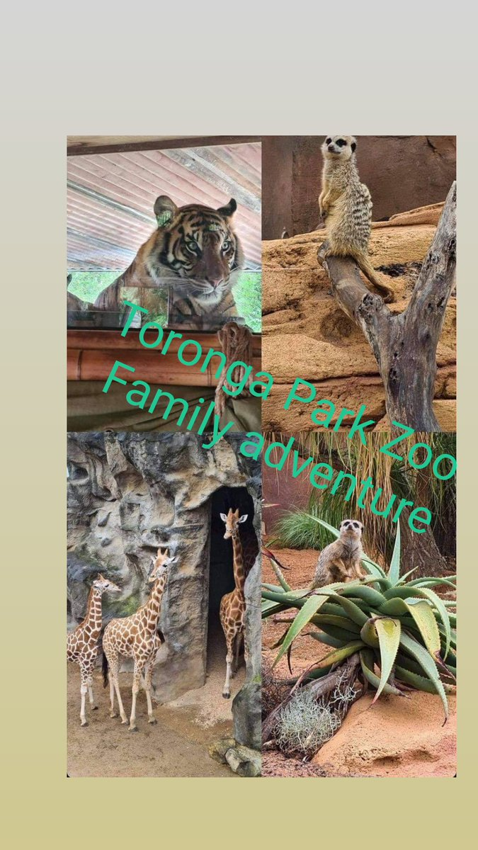 Nice family day out to the zoo #familytime #Zoo #animals