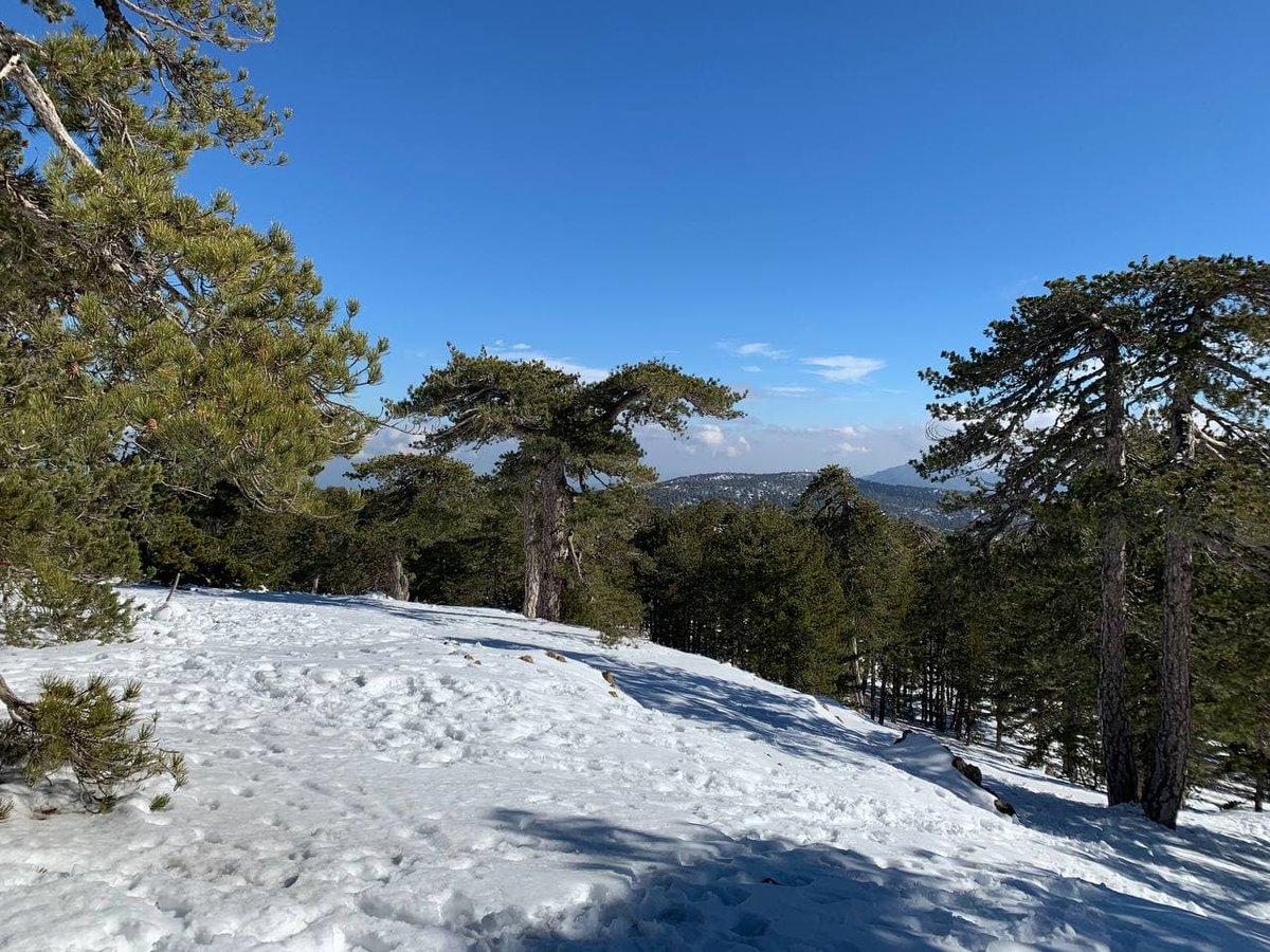 #Cyprus   #photography #NaturePhotography  #photographer  #новости #travelphotography #beautifulnature  #travelblogger #holidays #winter #January  #настроение #зимнеенастроение #Кипр #зима #отдых #снег