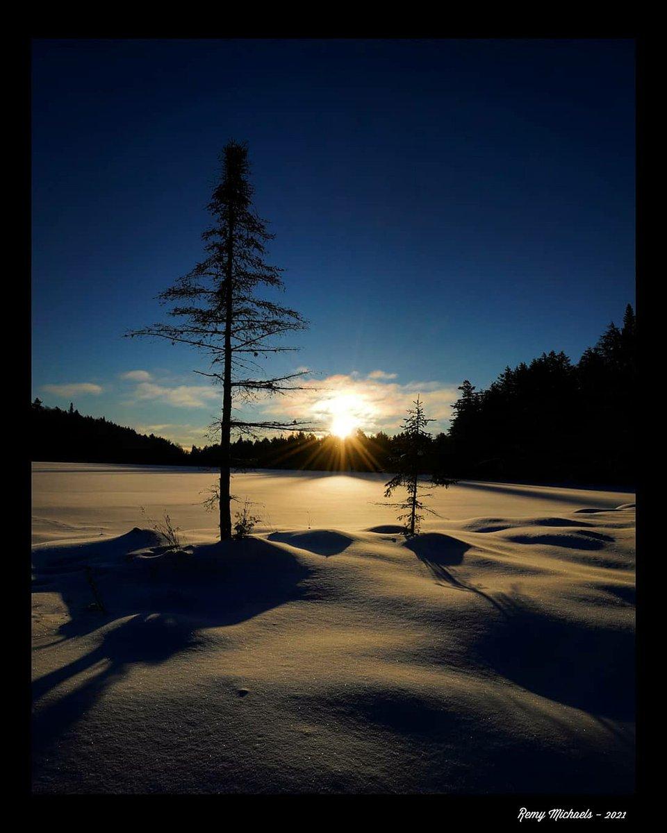 """NORTHERN DREAMS""  #CanadianGeographic #NationalGeographic #AlgonquinPark #Sunrise #FoundLake #Trees #Wildlife #Winter #OntarioParks #PicOfTheDay #Travel #Nature #Muskoka #Huntsville #Gravenhurst #Photography #Art #Earth 🌎☀️😎✌️👍🌲🌲🍁🌨️📸🐾🐾♥️🏆🇨🇦"