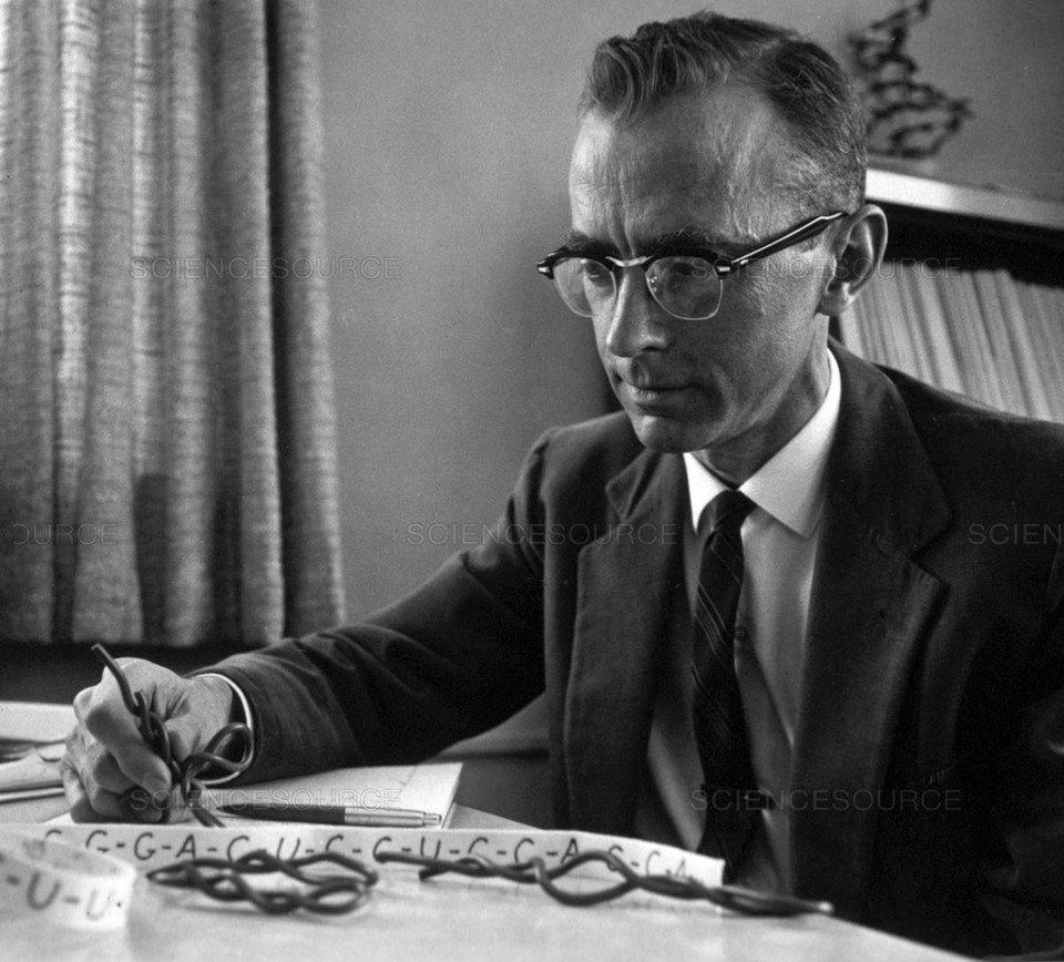 This day in science: In 1922, American biochemist Robert W. Holley was born. Holley was best known for sharing the #NobelPrize in #Physiology or #Medicine for describing the structure of alanine transfer RNA, linking DNA and protein synthesis.