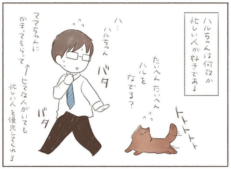 猫は忙しい人が好き猫はなぜ忙しいときに限って…… お出かけ前の飼い主を追いかける猫を描いた漫画が困っちゃうけどかわいい