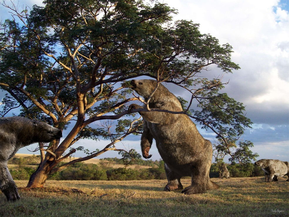 giant animals north america - 800×600