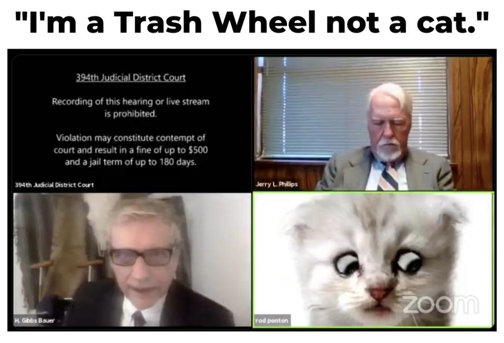 Im a Trash Wheel not a cat. - Says Trash Wheel Lawyer having zoom troubles