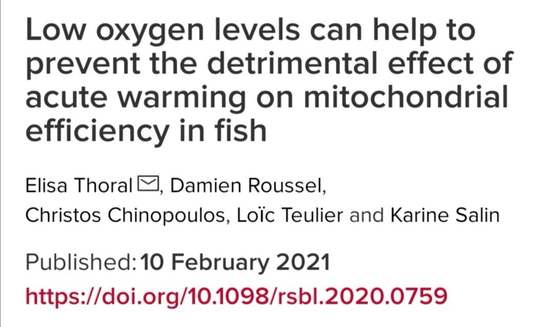 Congrats to @ElisaThoral and all the co-authors for this study! Looking foward to reading it. https://t.co/bOAbetCLYl
