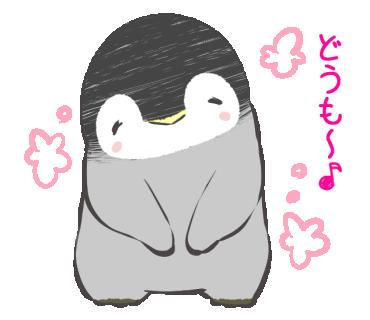 penguin259の画像