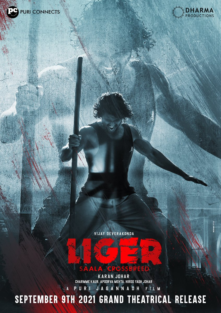 An entertainment knock-out for the globe! #Liger is all set to release in theatres on 9th September worldwide in 5 languages - Hindi, Telugu, Tamil, Kannada & Malayalam. #Liger9thSept #SaalaCrossbreed  @TheDeverakonda @ananyapandayy #PuriJagannadh @charmmeofficial @karanjohar