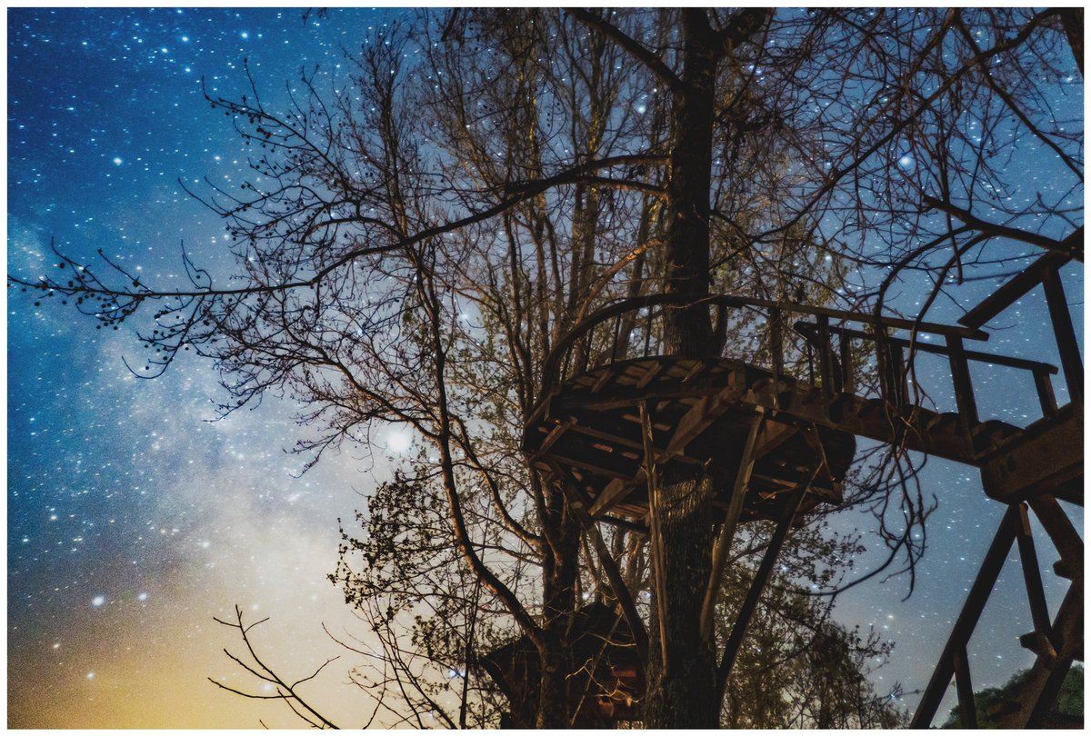 大分にある森のキャンプ場が まるで、絵本の世界だった