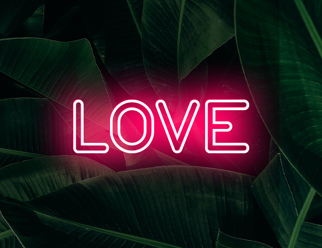 Since Valentines Day is coming up, we decided to go with a romantic theme ❤️ Here's a tutorial where we will teach you how to create your own neon text using our Text tool and Blending modes 🙌  Check it out here: https://t.co/awjKH0xxZp https://t.co/t3jC1poCpc