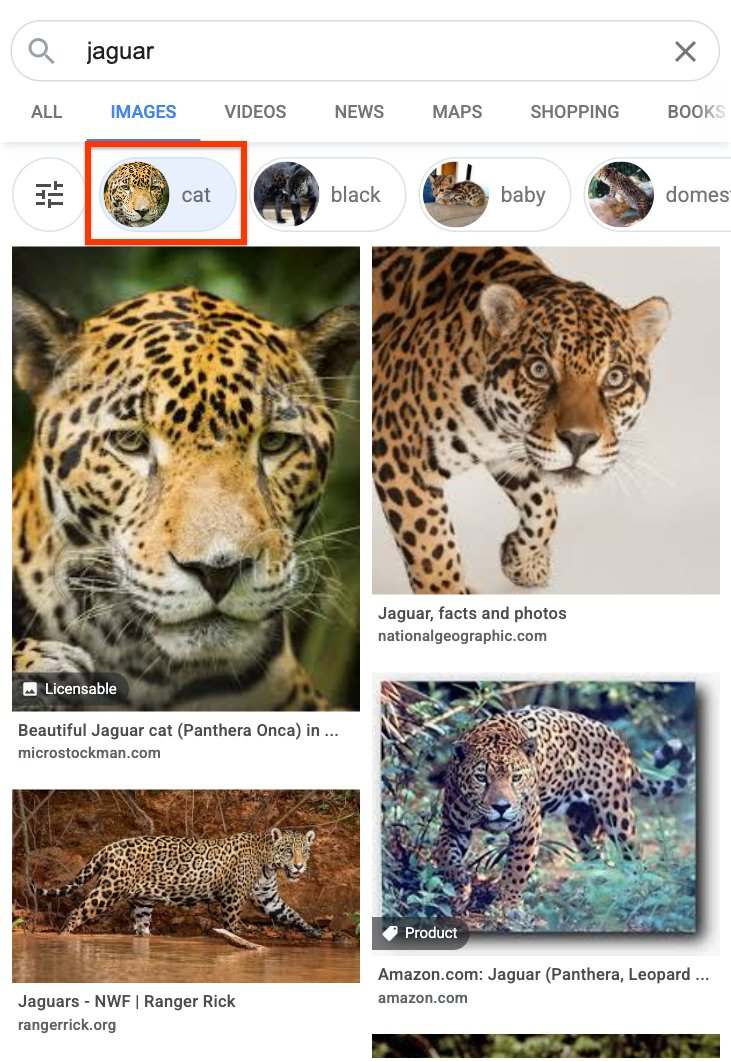 il nuovo filtro di Google Immagini
