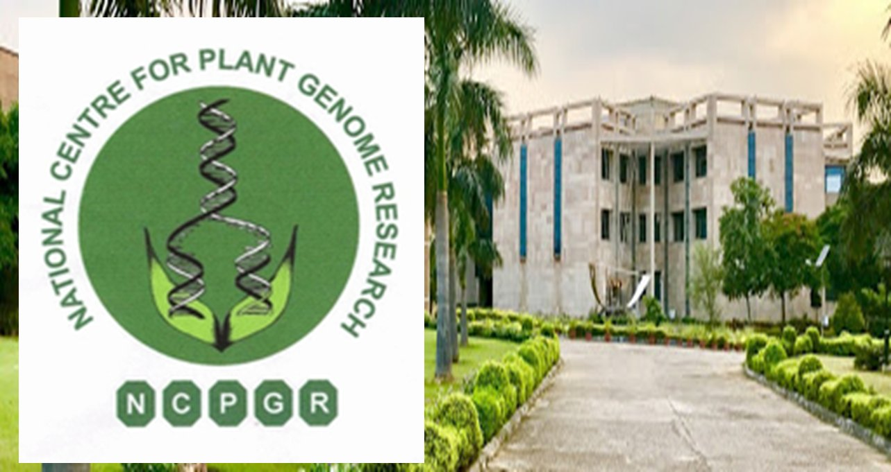 Scientist Positions at NIPGR, New Delhi, Pay Level ₹ 67,700 – 2,16,600
