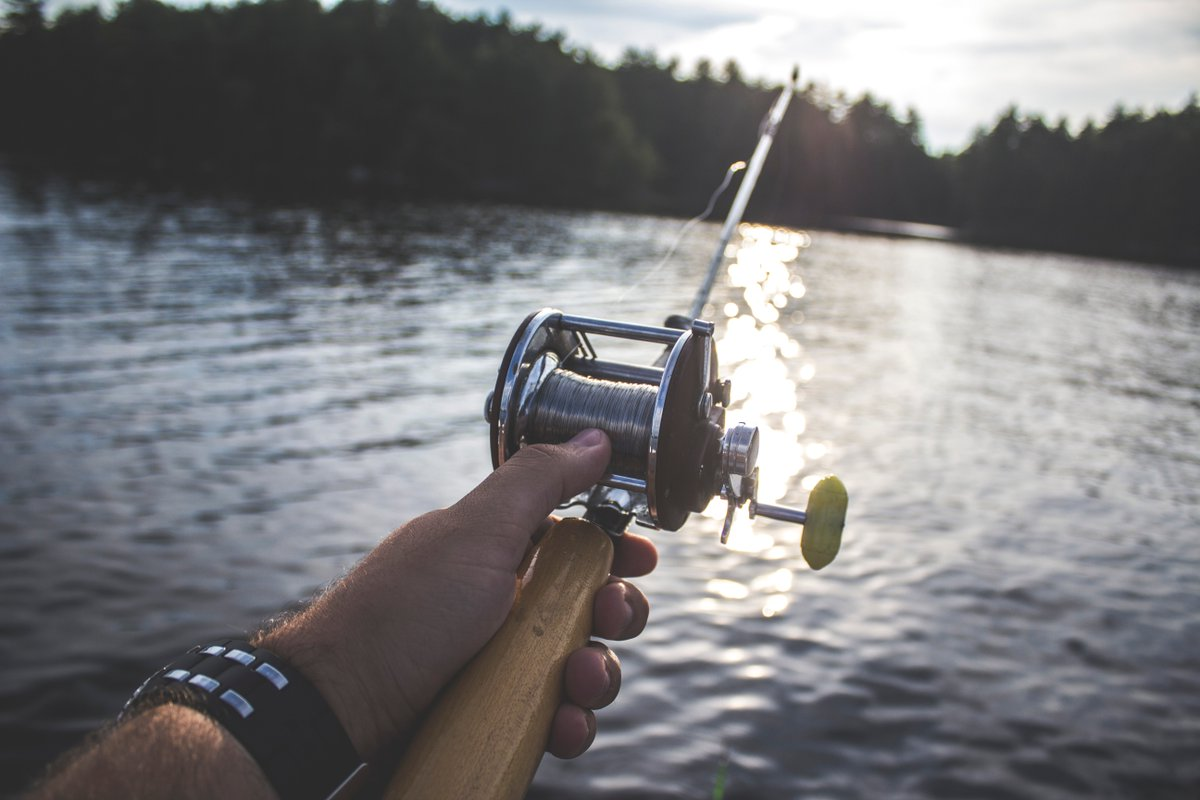 Don't even think about catching fish with your mouth in #Pennsylvania! It's #Illegal. #WeirdLaws