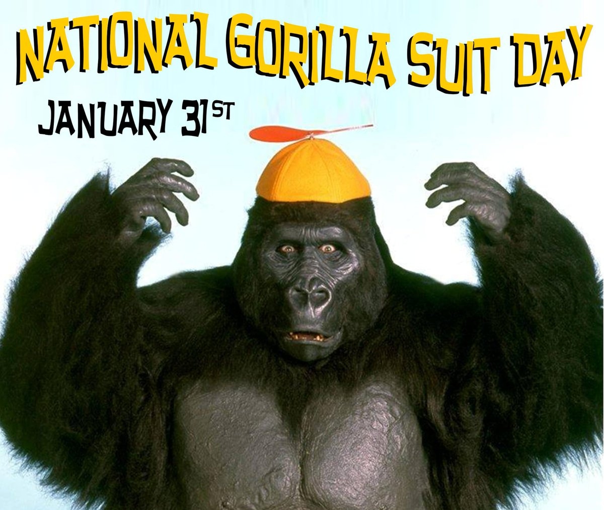 Its finally here! Its National Gorilla Suit Day! Wear your suit with pride! #nationalgorillasuitday