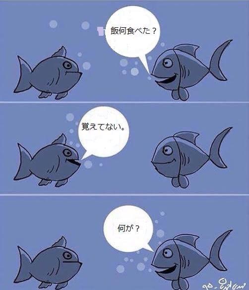 魚の記憶力は3秒