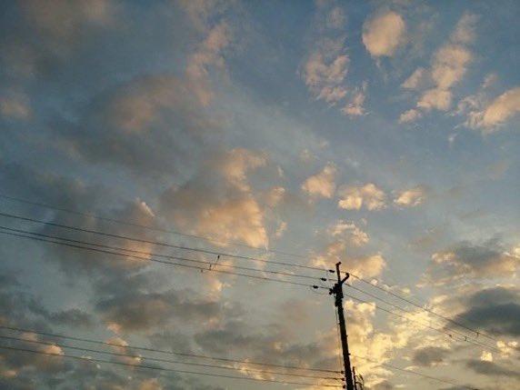 y0cchan__8888の画像