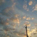 y0cchan__8888のサムネイル画像