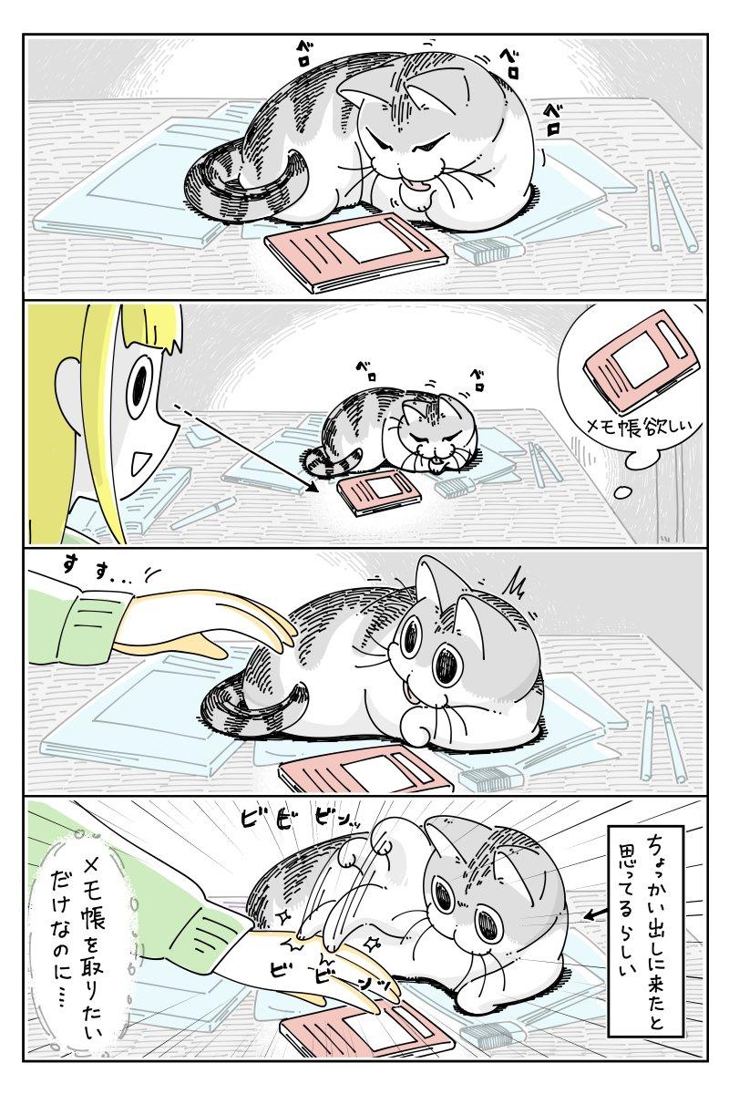 勘違いしちゃうネコ nekonavi.jp/catblog/archiv…
