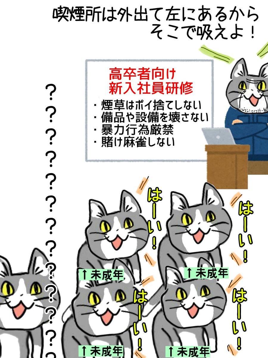 疑問に思ってはいけない新入社員研修 #現場猫