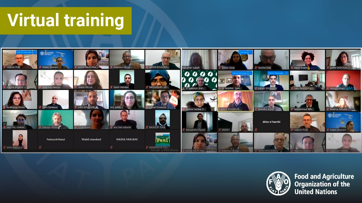 📣.@FAO EMC-AH led a virtual workshop to train vets, police officers & military personnel in North Africa on the Surveillance Evaluation Tool and its new Biothreat Detection Module under a joint project with OIE & INTERPOL ‼️ Thanks to @CanadaFP @GPWMDOfficial