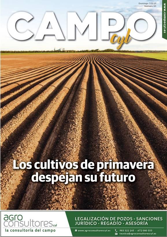 Resultado de imagen de Jornada Técnica de la Patata campocyl