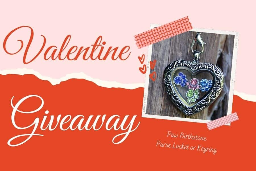 There are only a few days left to enter our #giveaway for the chance to #win a @PawZaar paw birthstone purse locket/key ring, which holds up to 4 paw print birthstone charms to celebrate your dog's birthday or adoption date! https://t.co/XrLzFOwCKX https://t.co/gVs5FT1eKB